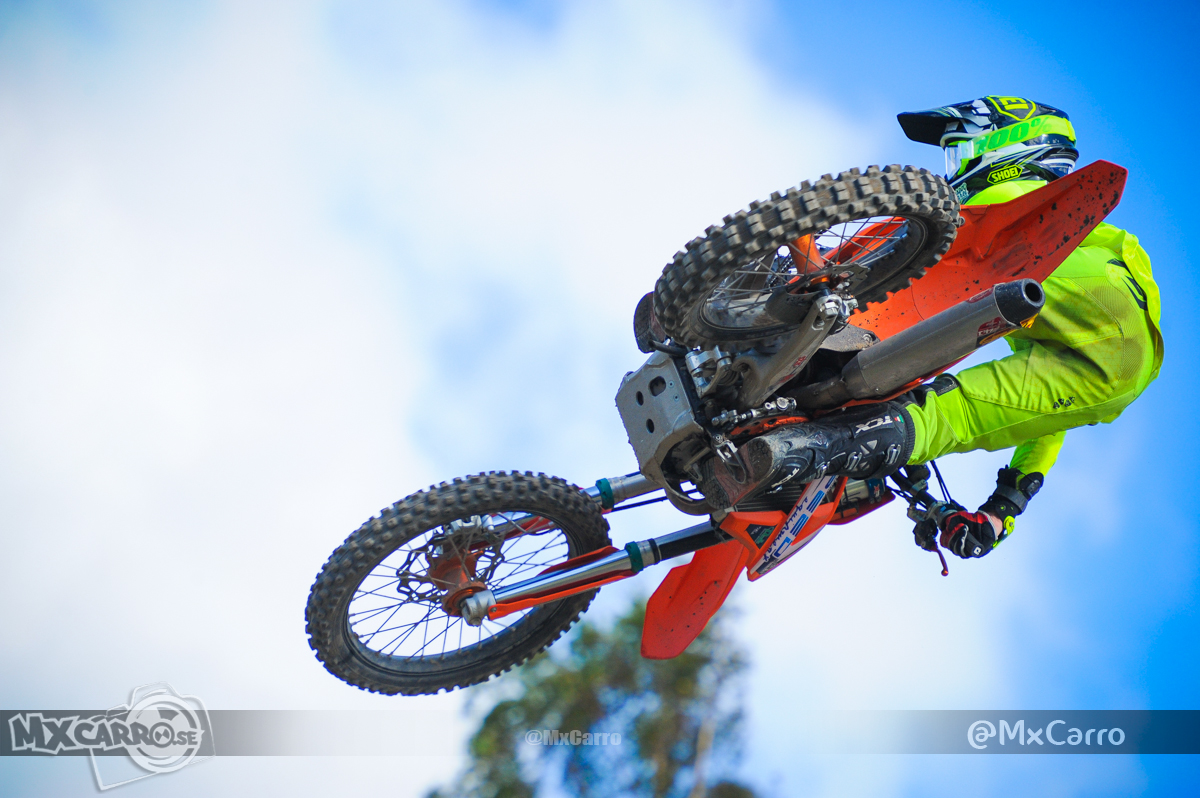WHIP IT WEDNESDAY!